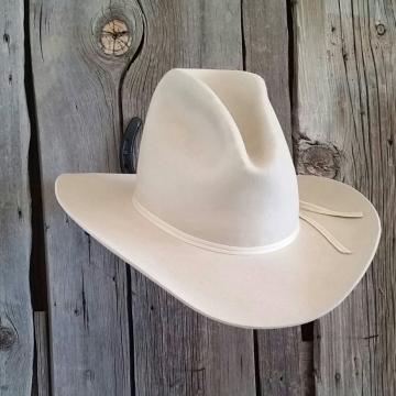 Horseshoe Cowboy Hat Rack (New Horseshoe)