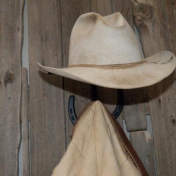 Horseshoe Cactus Hat Rack Coat Hook Combination
